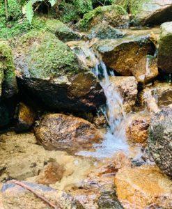 能勢の山水